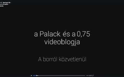 Bor Vlog 11 – Barrique láz